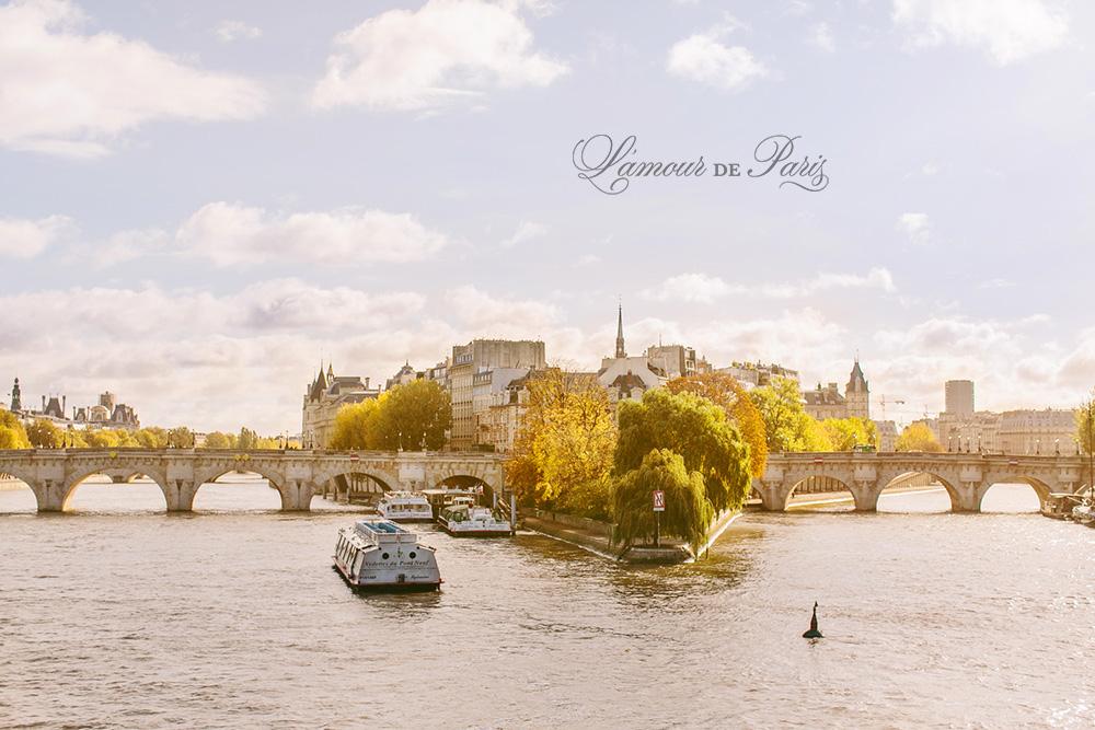 Ile de la Cite on the Seine River in Paris