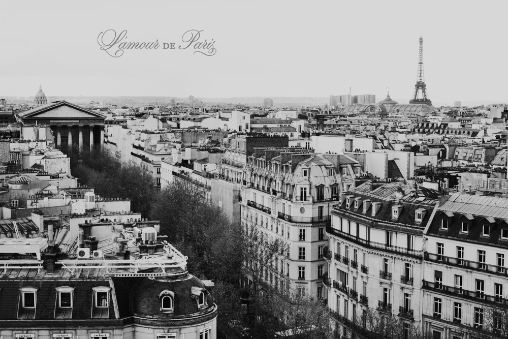 Paris in black and white by Paris photographer Stacy Reeves