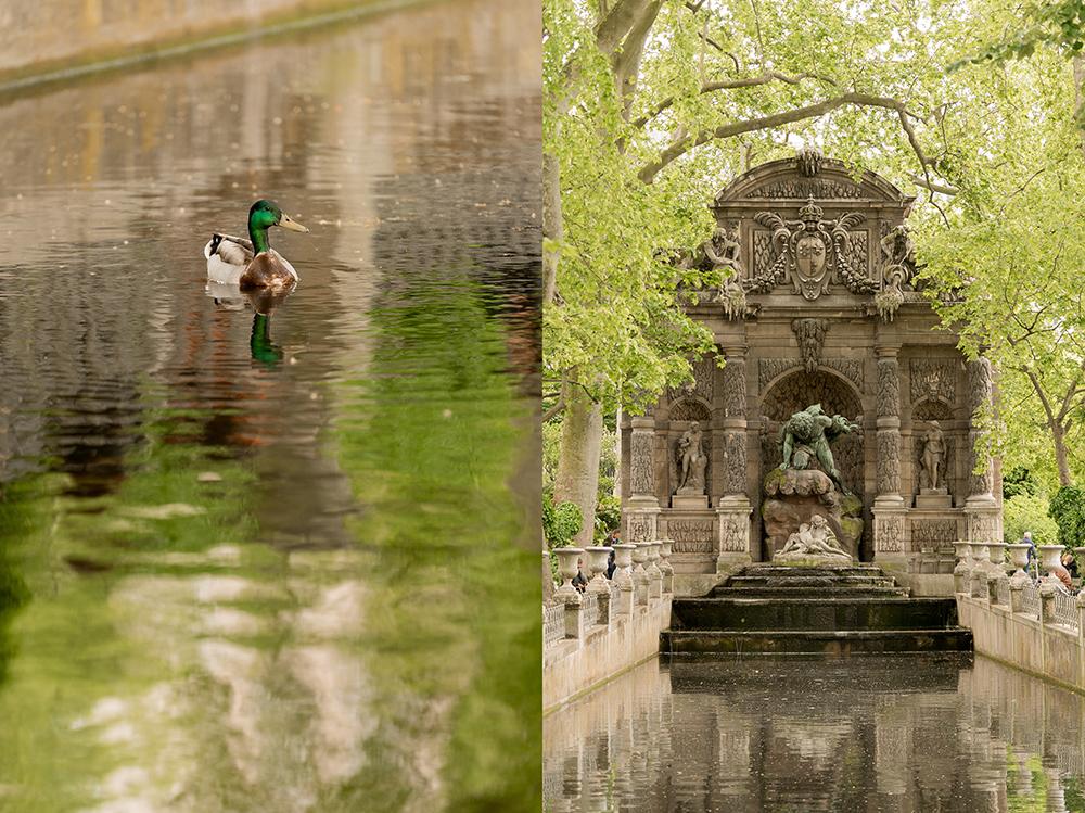 luxembourg garden medici fountain